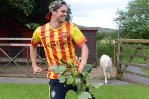 goats escape