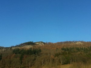 Moncreiffe Hill and Woods