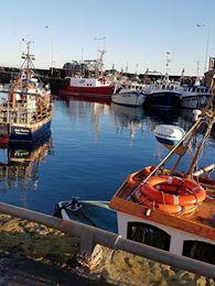 Pittenweem Harbour, East Neuk of Fife